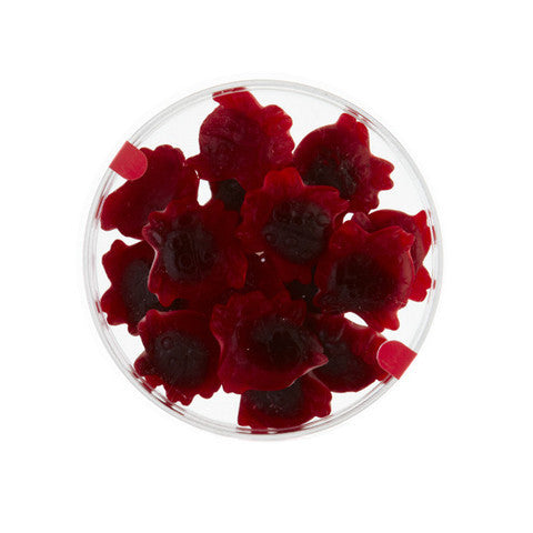 juicy raspberry ladybirds gourmet gummy petri