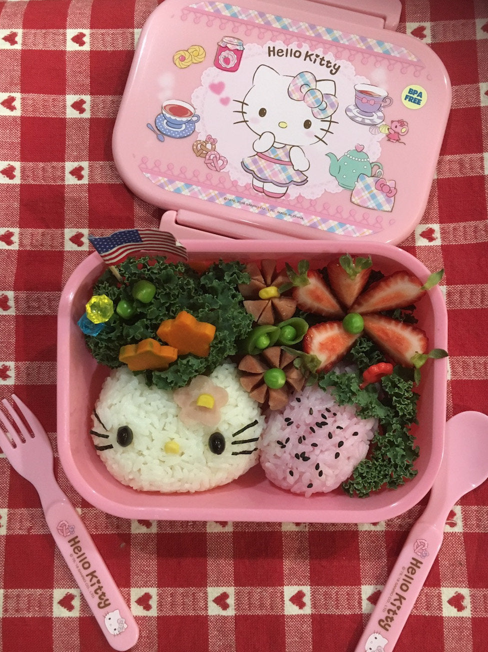 Hello Kitty Onigiri Workshop