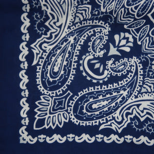 Blue silk bandana