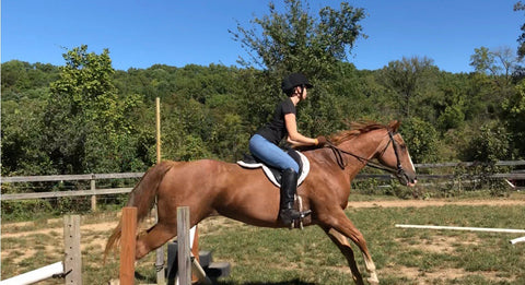 Advanced Horse Training and Riding Summer School