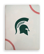 Michigan State Spartans Baseball Portfolio