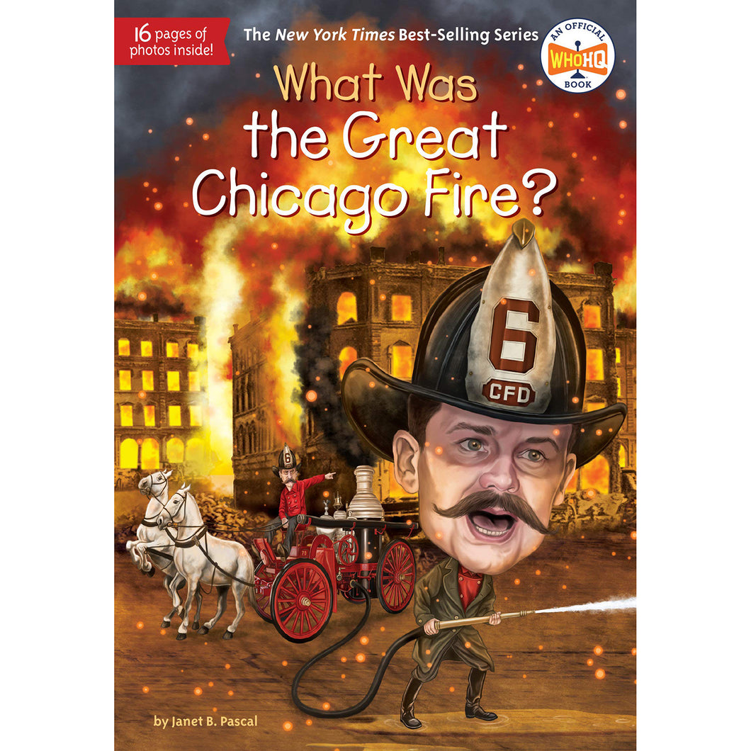 What Was the Great Chicago Fire? - Chicago History Museum Store