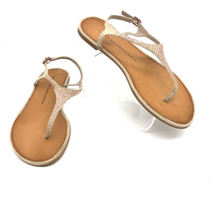 Primary Photo - BRAND: CHINESE LAUNDRY STYLE: SANDALS COLOR: SPARKLES SIZE: 6 SKU: 262-26275-48701AS IS