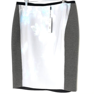 Primary Photo - BRAND: TAHARI STYLE: SKIRT COLOR: GREY SIZE: XXL /16SKU: 262-26211-144632