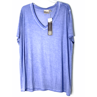 Primary Photo - BRAND: DANTELLE STYLE: TOP SHORT SLEEVE COLOR: PERIWINKLE SIZE: 2X SKU: 262-26241-47541