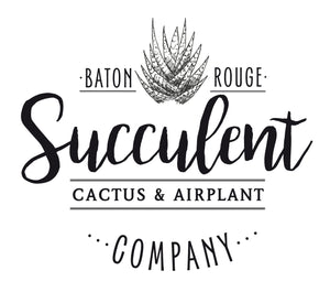 Baton Rouge Succulent Co