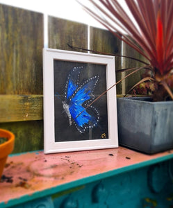 The blue butterfly by Fishers Screen Art
