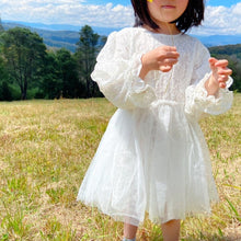 Load image into Gallery viewer, Snowy Rose Tulle Dress