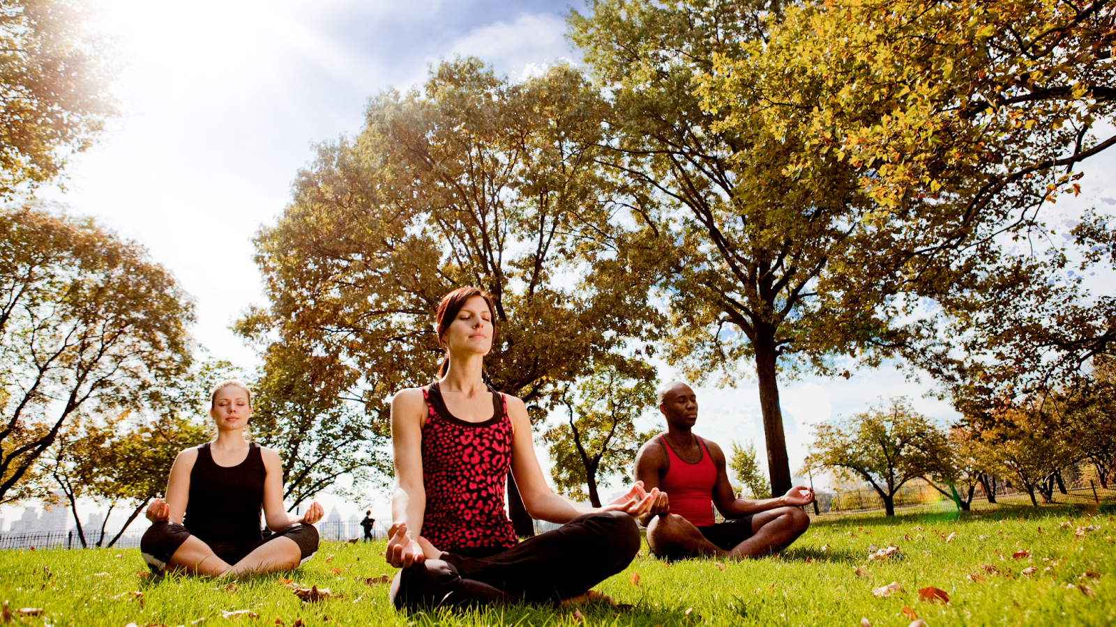 Three individuals do yoga in the park