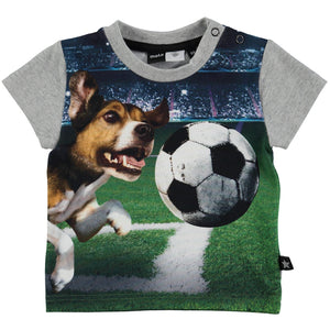 Molo Dog and Ball Baby T-Shirt