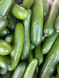 Persian Cucumbers from Country Fresh Herbs
