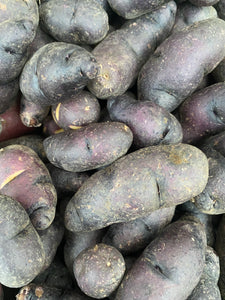 Russian Banana & Purple Fingerling Potatoes from Weiser Family Farms