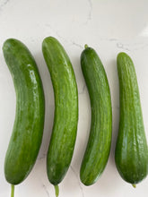 Load image into Gallery viewer, Persian Cucumbers from Country Fresh Herbs