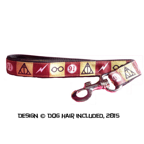 Harry Potter-inspired leash