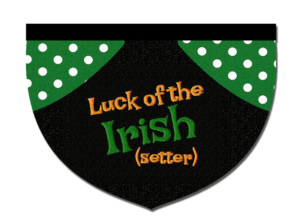 Luck of the Irish (setter)!