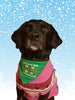 Ugly Christmas Sweater reversible  pet bandana