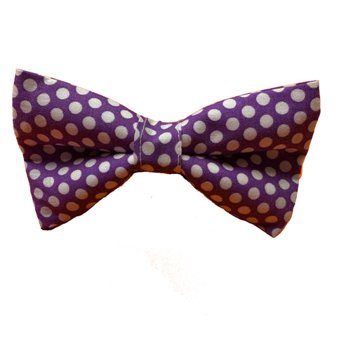 Purple Polkadog Geronibow
