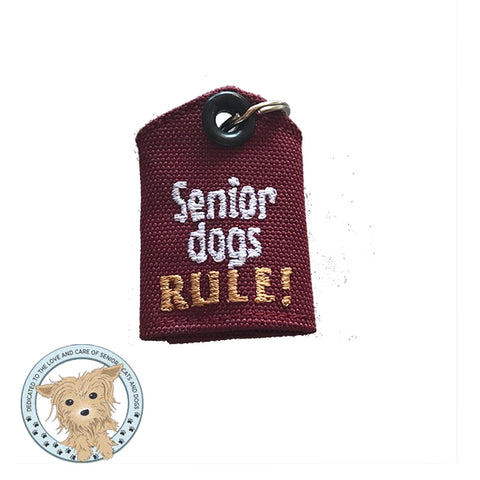Senior dogs RULE!
