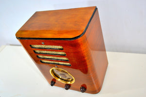"World War Post Depression Era 1937 Crosley ""Fiver""  Model 517 Vacuum Tube AM Radio True Historic Beauty! - [product_type} - Crosley - Retro Radio Farm"