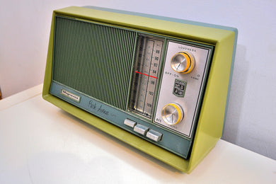 AM FM Olive Green and Grey Blue 1962 Magnavox