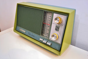 "AM FM Olive Green and Grey Blue 1962 Magnavox ""Park Avenue"" Model FM042 Vacuum Tube Radio Loud Clear Sounding! - [product_type} - Magnavox - Retro Radio Farm"