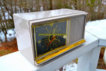 Load image into Gallery viewer, SOLD! - Mar 9, 2018 - BLUETOOTH MP3 UPGRADE ADDED - GREY ICE Mid Century Retro Vintage 1959 Bradford Model 89631 Tube AM Clock Radio Rare Works Great Near Mint Condition! - [product_type} - Bradford - Retro Radio Farm