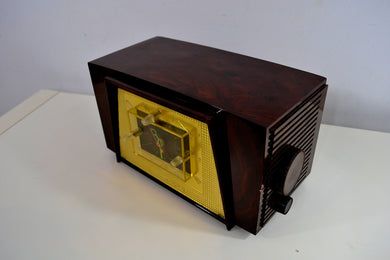 Tortoise Shell Brown Marbled Vintage Truetone Model D2585 AM Tube Radio Rare Beautiful!