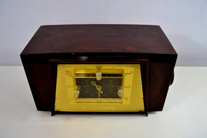 SOLD! - June 14, 2019 - Tortoise Shell Brown Marbled Vintage Truetone Model D2585 AM Tube Radio Rare Beautiful!