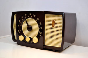 Savanna Brown and White 1955 Zenith Y723 AM/FM Tube Radio Gorgeous and Sounds Magnifico! - [product_type} - Zenith - Retro Radio Farm
