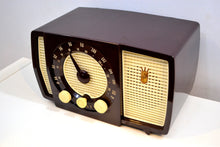 Load image into Gallery viewer, Savanna Brown and White 1955 Zenith Y723 AM/FM Tube Radio Gorgeous and Sounds Magnifico! - [product_type} - Zenith - Retro Radio Farm
