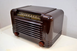 Cappuccino Bakelite 1946 Motorola Model 65X-11A Vintage Vacuum Tube AM Radio Deco Beauty! - [product_type} - Motorola - Retro Radio Farm