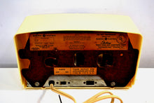 Load image into Gallery viewer, Ivory White Vintage 1948-49 General Electric Model 516F AM Vacuum Tube Radio Solid Player Popular Model! - [product_type} - General Electric - Retro Radio Farm