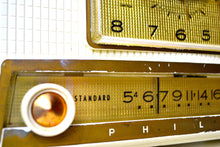 Load image into Gallery viewer, VERSAILLES Ivory and Gold 1959 Philco Model F760-124 Tube AM Clock Radio Bells and Whistles!