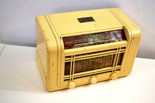 Load image into Gallery viewer, Gifted to Football Coach in 1946 Truetone Model D2613 Shortwave AM Tube Radio! - [product_type} - Truetone - Retro Radio Farm