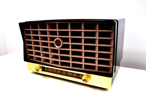 SOLD! - Feb. 8, 2020 - Glorious Black Vintage 1953 RCA Victor 6-XD-5 Tube Radio Excellent Condition Works Great! - [product_type} - RCA Victor - Retro Radio Farm