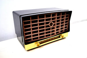 Glorious Black Vintage 1953 RCA Victor 6-XD-5 Tube Radio Excellent Condition Works Great! - [product_type} - RCA Victor - Retro Radio Farm
