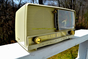 SOLD! - July 28, 2018 - ALL IVORY Mid Century Retro 1956 RCA Victor 9-C-7LE Tube AM Clock Radio Totally Restored and Sounds Great! - [product_type} - RCA Victor - Retro Radio Farm