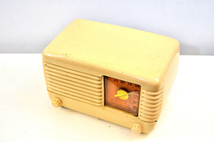 Art Deco Ivory Bakelite Vintage 1949 Philco Transitone 49-500 AM Radio Popular Design Back In Its Day! - [product_type} - Philco - Retro Radio Farm