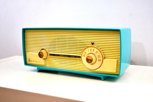 Seafoam Delight Turquoise and White 1958 Admiral Model 5D4 Tube AM Radio Absolutely Beauteous! - [product_type} - Admiral - Retro Radio Farm