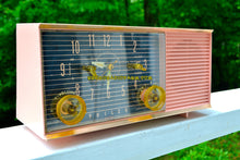 Load image into Gallery viewer, SOLD! - Nov 7, 2018 - Chiffon Pink Mid Century Retro 1959 Philco Model G753-124 Tube AM Clock Radio - [product_type} - Philco - Retro Radio Farm