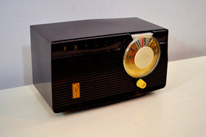 SOLD! - Sept 1, 2019 - Mocha Swirl Mid Century Vintage 1958 Philco E-814-124 AM Tube Radio Sounds Great! - [product_type} - Philco - Retro Radio Farm