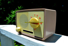 Load image into Gallery viewer, SOLD! - Dec 3, 2018 - 1959 Taupe Midget Alrad Japanese Post War Tube AM Radio! It's Rad! - [product_type} - Alrad - Retro Radio Farm
