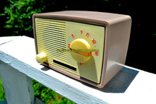 Load image into Gallery viewer, 1959 Taupe Midget Alrad Japanese Post War Tube AM Radio! It's Rad! - [product_type} - Alrad - Retro Radio Farm