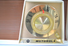 Load image into Gallery viewer, SOLD! - Jan. 11, 2019 - Tan and White Mid Century Retro 1962 Motorola A17W29 Tube AM Radio Cool Model Near Mint! - [product_type} - Motorola - Retro Radio Farm