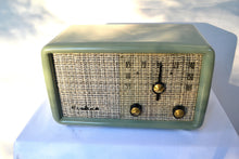 Load image into Gallery viewer, SOLD! - Nov. 26, 2018 - SAGE GREEN With Heather Tweed 1955 Montgomery Wards Airline Model GSE-1607 AM Bakelite Tube Radio Totally Restored! - [product_type} - Airline - Retro Radio Farm