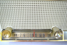 Load image into Gallery viewer, Sandalwood Beige 1964 Philco Model N-876ABE-124 Dual Speaker AM Tube Radio Sounds Lovely! - [product_type} - Philco - Retro Radio Farm