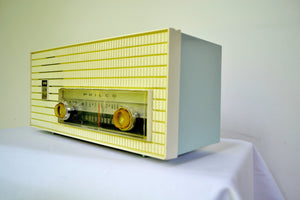 AM FM Baby Blue and White 1963 Philco Model L926-124 Tube Radio Rare Functional With Issues - [product_type} - Philco - Retro Radio Farm