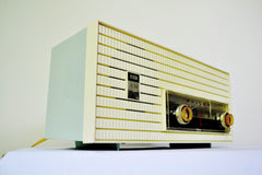 AM FM Baby Blue and White 1963 Philco Model L926-124 Tube Radio Rare Functional With Issues