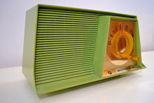 Load image into Gallery viewer, SOLD! - Aug 18, 2019 - Avocado Mid Century Vintage 1962 Motorola A10G62 Tube AM Radio Cool Model Rare Color! - [product_type} - Motorola - Retro Radio Farm