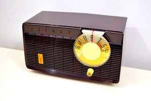 Mocha Swirl Mid Century Vintage 1958 Philco E-814-124 AM Tube Radio Sounds Great! - [product_type} - Philco - Retro Radio Farm
